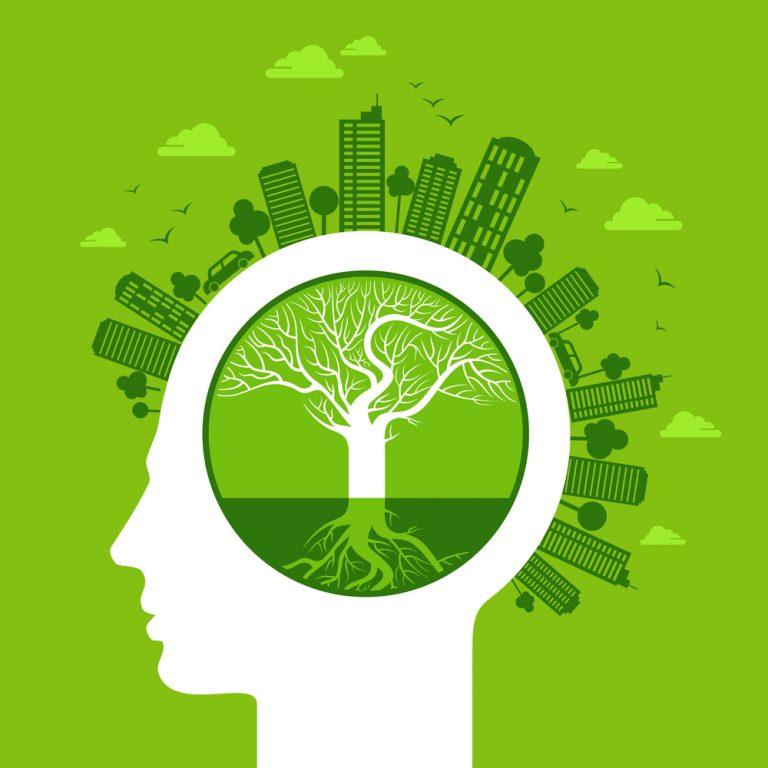 GICSA: Preocupación por el medio ambiente y desarollo sostenible
